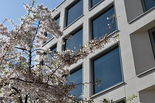 2019-03-24: Spring In A Square