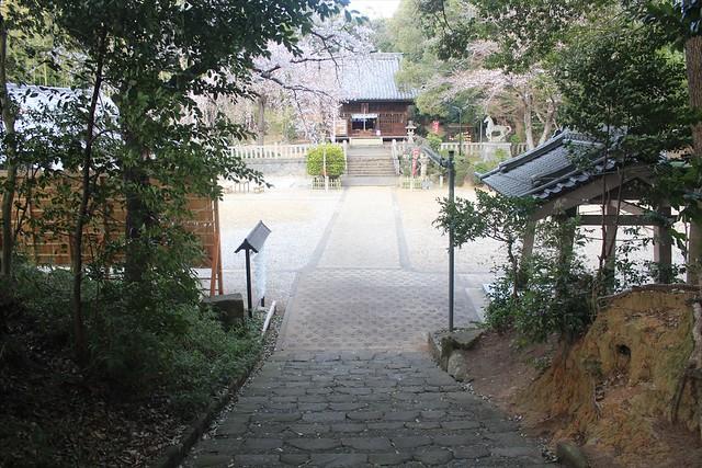 torohachiman-gosyuin003