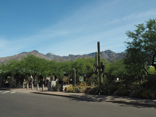 S5024574 Tucson AZ Sabino Canyon Recreational Area