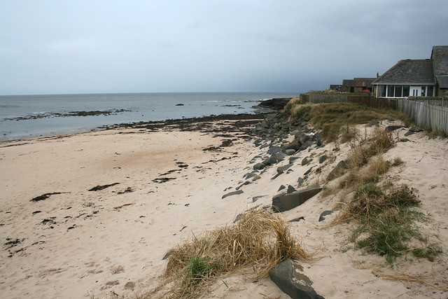 The coast at Cresswell