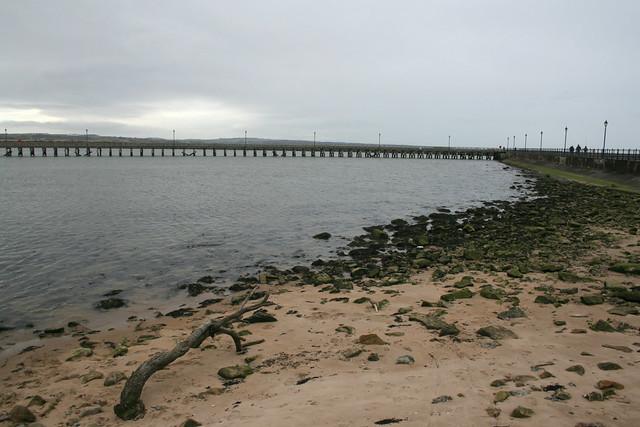 Amble Harbour