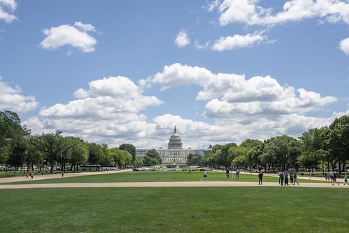 washingtondc nationalmall capitol uscapitol dome capitoldome westfrontofcapitol grantstatue washington dc unitedstates