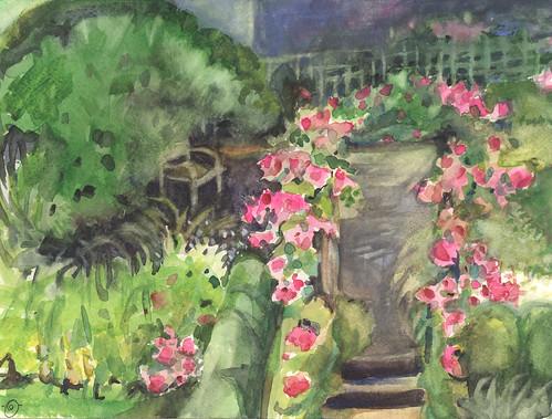 Rose trellis still blooming