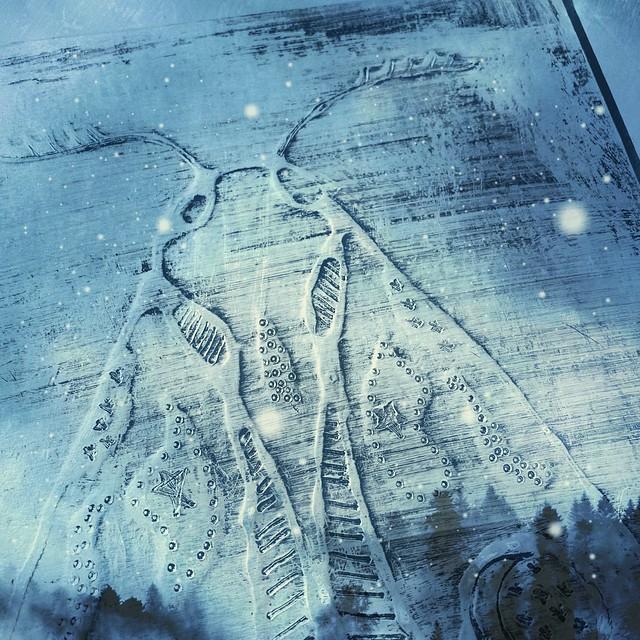 Moth Foil Art