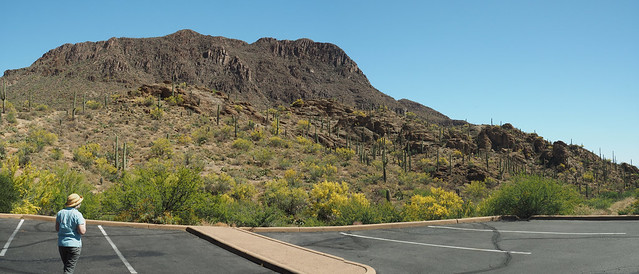 S5035022 Tucson west mountains_2 ICE rm stitch99