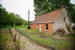 Farm Gand  -  (12)