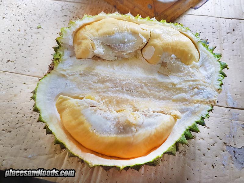 thail durian chanee