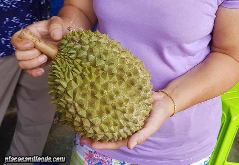 thailand chanee durian