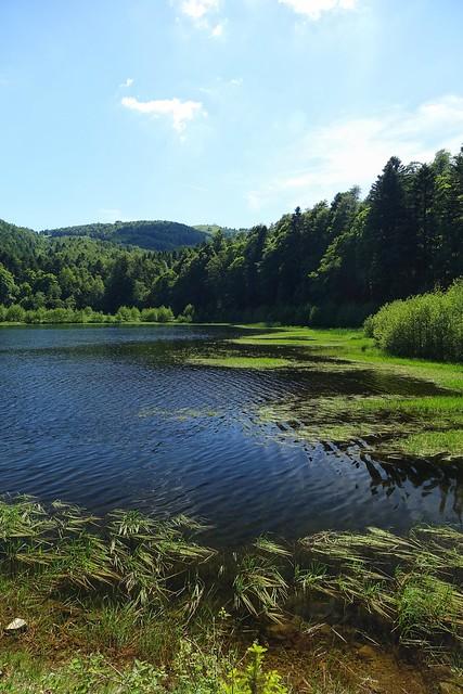 17/06/19  Tour du Lac de la Lauch + passage au Treh