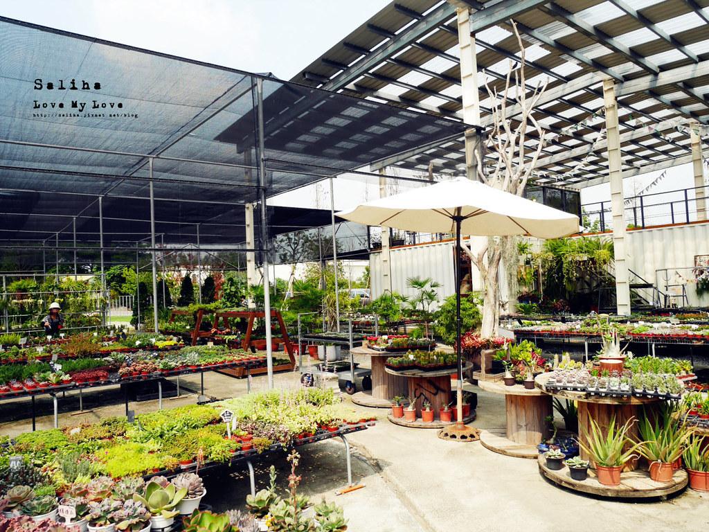 彰化旅遊景點推薦田尾公路花園綠果庭院Green Life多肉植物市場 (2)