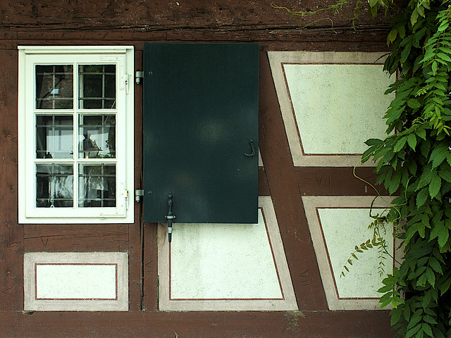 Fine Window-Shutter-Vine