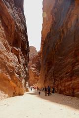 Petra - (177)
