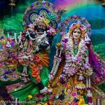 ISKCON Vrindavan Deity Darshan 19 June 2019