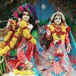 ISKCON Rajkot Deity Darshan 19 June 2019