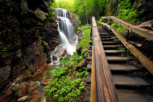 gorge flume nature newengland newhampshire nh forest mountains canyon beauty waterfall stairs canon eos green spring june wonder lincoln franconia notch
