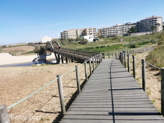 Camino Portugues (182 von 333)