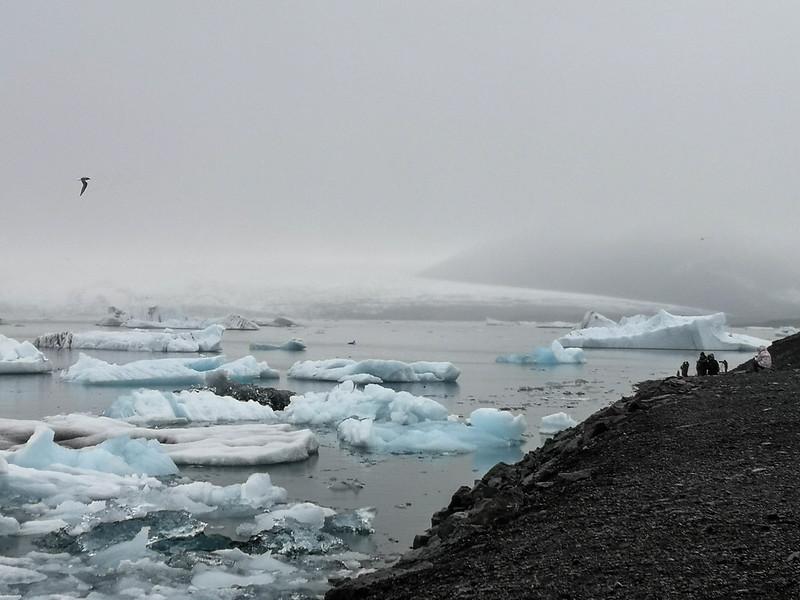 Islannin jäätikkölaguunit