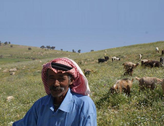 Bedouin Herder in the Hima of Era-Jordan, Credit: Mahfouz Abu Zanat