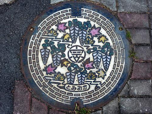 Tomioka Gunma, manhole cover (群馬県富岡市のマンホール)