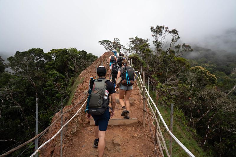 20190504_キナバル山登山(1日目)_0489.jpg