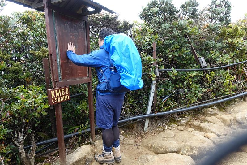 20190504_キナバル山登山(1日目)_0593.jpg