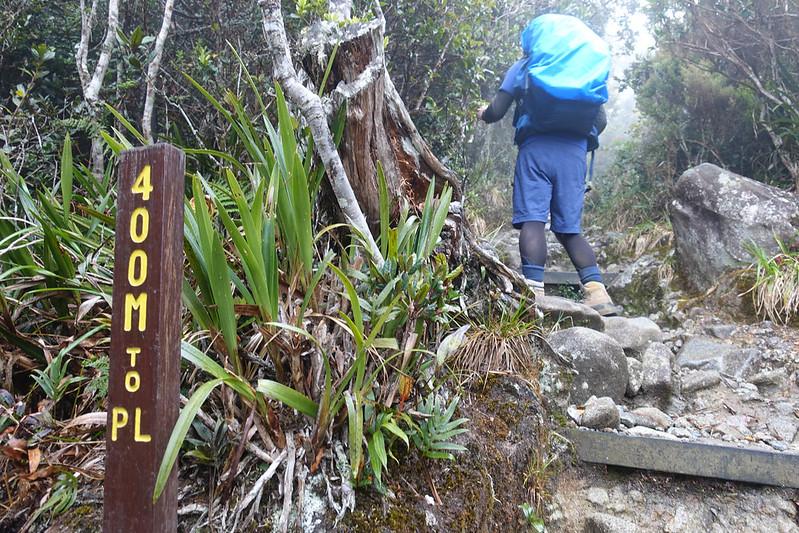 20190504_キナバル山登山(1日目)_0602.jpg