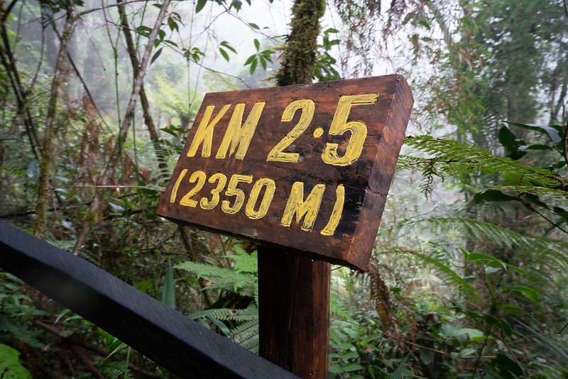 20190504_キナバル山登山(1日目)_0530.jpg