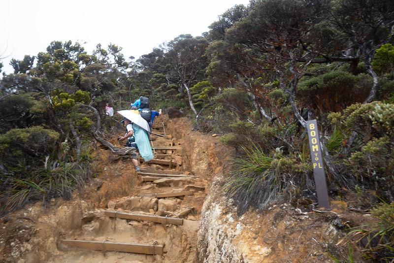 20190504_キナバル山登山(1日目)_0009.jpg