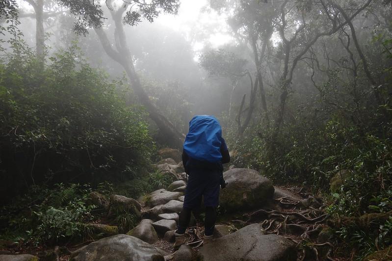 20190504_キナバル山登山(1日目)_0599.jpg