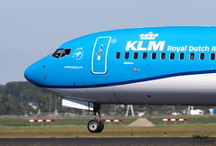 Morro del 737 Albatros de KLM