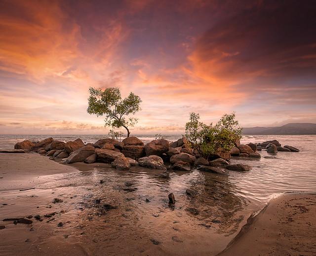 Under a Queensland Sky