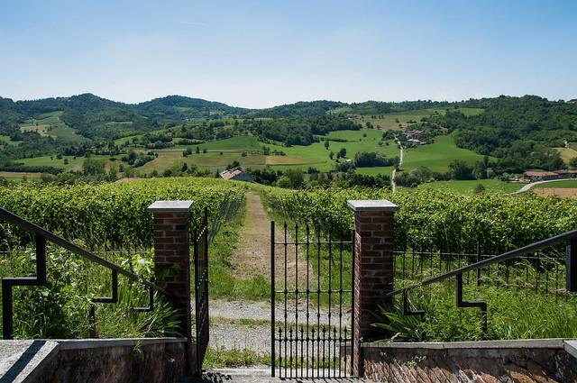 Apertura sul Monferrato