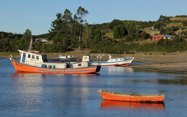 Isla Apiao, Chiloé, Sur de Chile. 2016