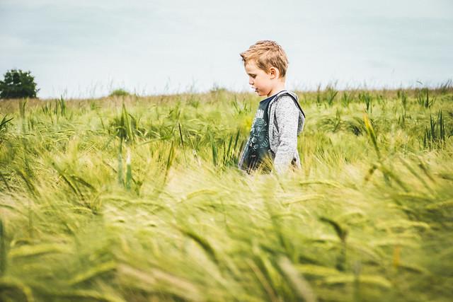 Walking through the field