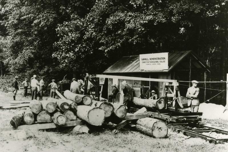 Sawmill demonstration