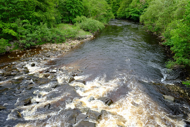 River Swale  (the dales)