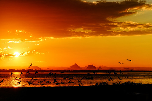 sunset goldenhour sea mountains birds ocean banksiabeach kakadureserve bribieisland queensland australia nikond850 nikon2401200mmf40