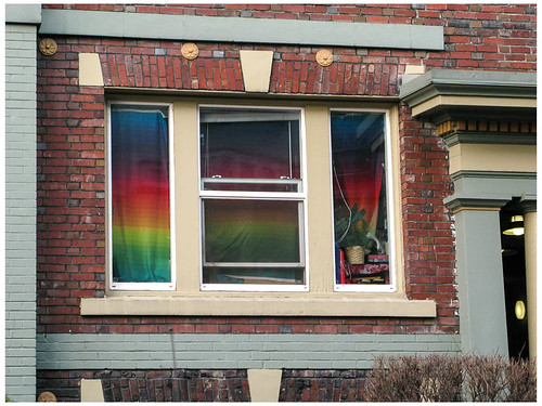 Pride Window with Plant