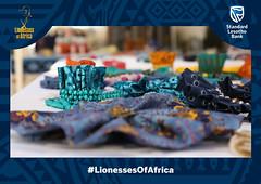 Lioness Lean In - Leribè District, Lesotho, 14 June 2019