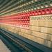 "<p><a href=""https://www.flickr.com/people/michel1276/"">michel1276</a> posted a photo:</p>  <p><a href=""https://www.flickr.com/photos/michel1276/48094617638/"" title=""Subway Prag""><img src=""https://live.staticflickr.com/65535/48094617638_1ae566db76_m.jpg"" width=""240"" height=""160"" alt=""Subway Prag"" /></a></p>"