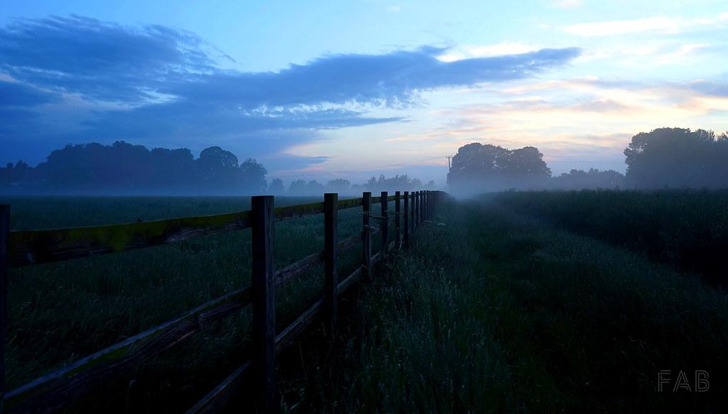 Twilight Fog