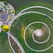 Butler Park Spiral