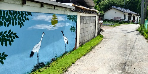 동네한바퀴 | 벽화가 있는 집