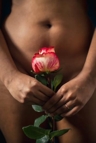 mlusine-roses