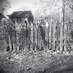Old fences make scared neighbors