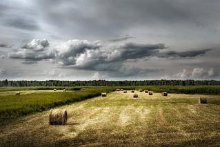 Dolistowo region, Poland.