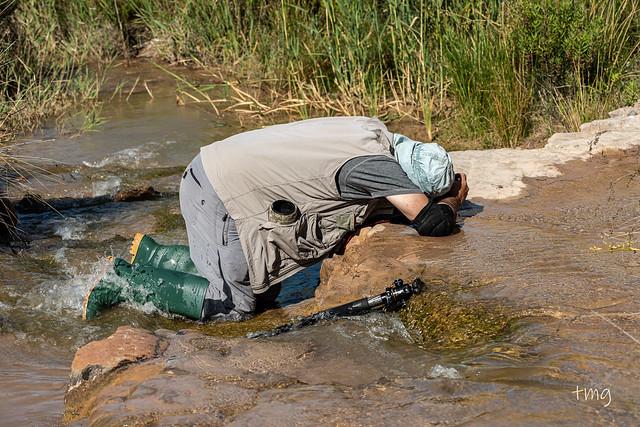 Fotógrafo en acción / Photographer in action