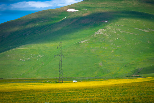 armenia vayotsdzorregion yellow wildflower meadows