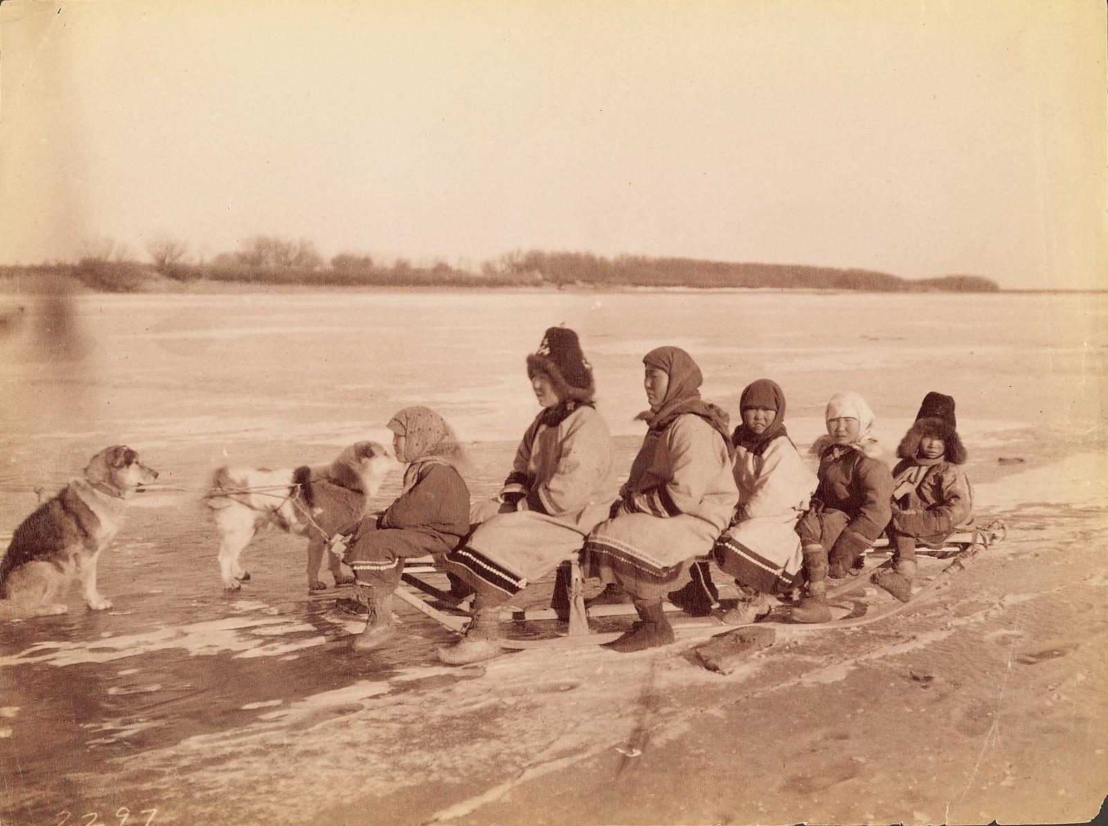 Группа женщин и детей на собачьей упряжке