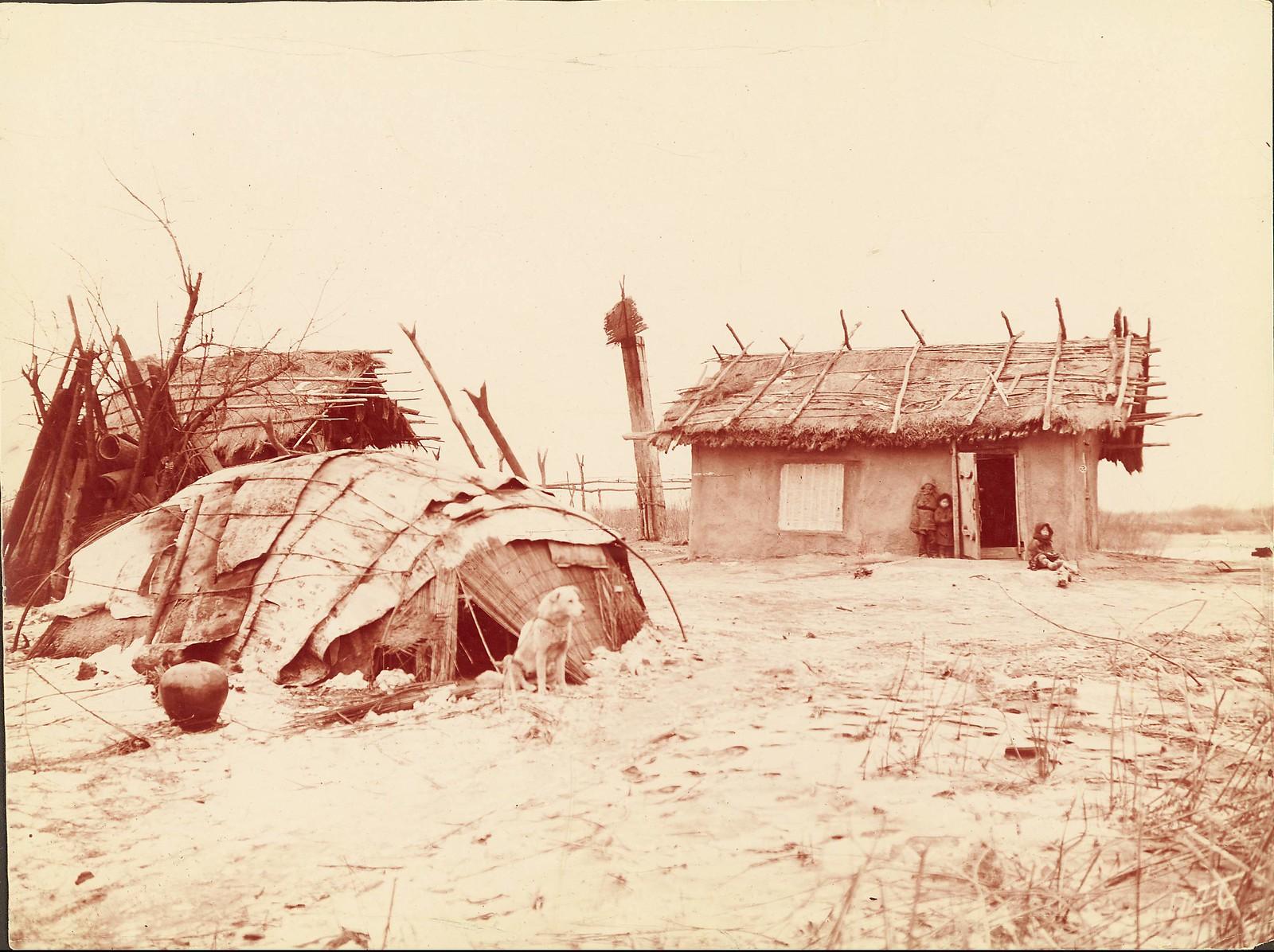 В деревне гольдов к северу от Хабаровска. На переднем плане привязанная собака